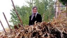 Taranca zdravana din Oltenia, Nicolita nu e intimidata defel de UE