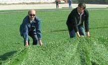 Temelescu si Condescu i-au pregatit covorul verde lui Mircea Sandu