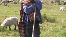 În 15 ani de păstorit, Vasile Ştefan a strâns bani de casă