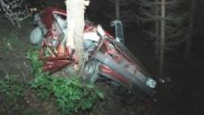 Din cauza vitezei, maşina s-a lovit violent de un copac de pe marginea drumului