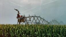 Efectele secetei ar putea fi diminuate prin folosirea unui sistem de irigaţii