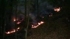 Incendiul a luat amploare