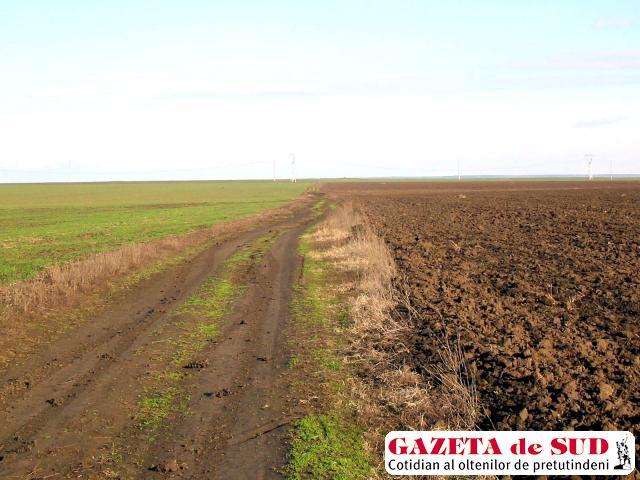 Este posibil ca în primăvară suprafeţe mari de teren agricol să rămână pârloage