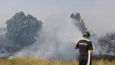 În incendiile izbucnite sâmbătă au ars sute de hectare de iarbă şi pădure