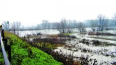 Jiul a inundat sute de hectare de teren