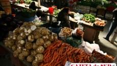 În timp ce unii fermieri muncesc din greu să producă legume şi fructe, alţii cumpără din angrouri şi le vând ca provenind din România