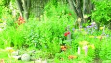 Puteţi avea o grădină frumoasă fără să folosiţi pesticide