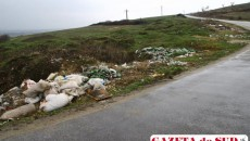 Gunoaiele aruncate la marginea drumurilor, o problemă fără rezolvare