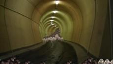 Imaginaţi-vă sistemul judiciar din România sub forma unui tunel, cu ambele capete păzite cu străşnicie de o reţea de şobolani