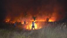 Pompierii şi voluntarii s-au luptat ore în şir cu flăcările care mistuiau miriştile