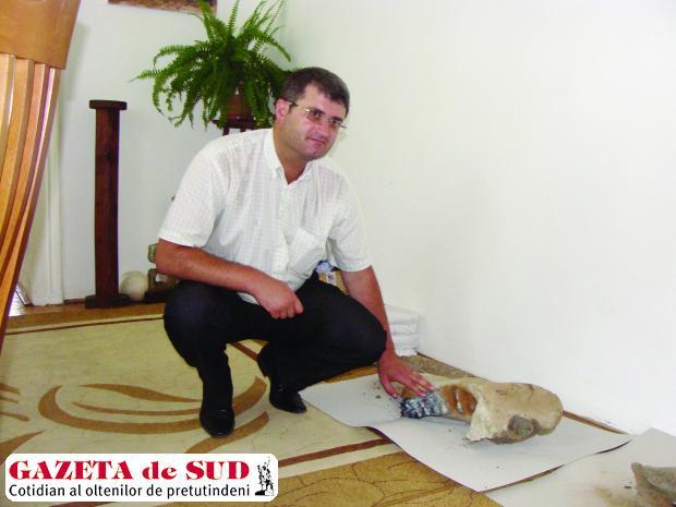 Dumitru Hortopan, directorul Muzeului Judeţean de Istorie, alături de oasele fosilizate  ale rinocerului lânos