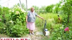 Locuitorii din comuna Robăneşti au în fiecare an probleme cu furnizarea apei