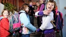 Elevii vor reveni la şcoală pe 10 februarie şi vor începe cursurile celui de-al doilea semestru al anului şcolar 2013-2014