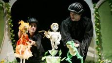 """Reprezentația """"Prințul Broască"""" pe scena Teatrului Național din Caracal"""