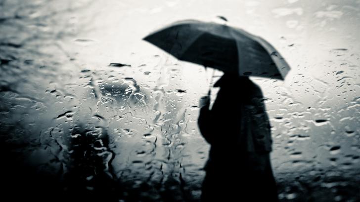 zi-ploioasa