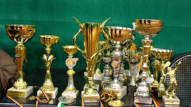 Câteva dintre trofeele cucerite de Alexandru Coman