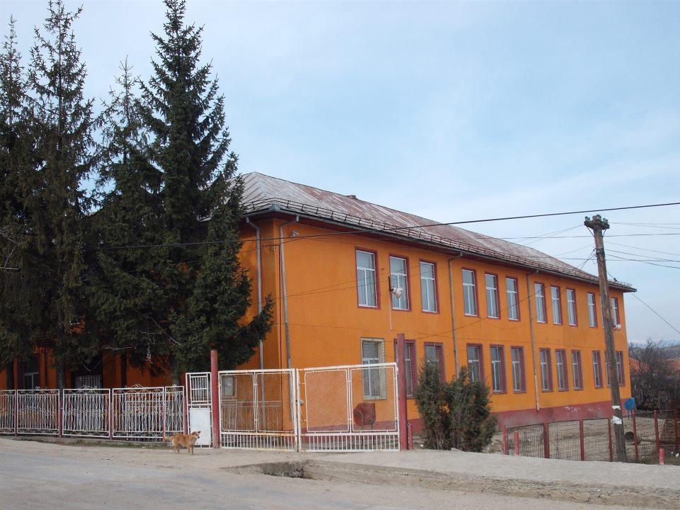 Liceul Tehnologic din Roşia de Amaradia