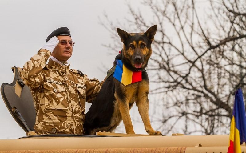 Max împreună cu cel care l-a antrenat pentru misiuni, plutonierul major Valentin Roşioară (Foto: photoexplore.ro)