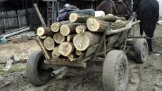 furt-de-lemne
