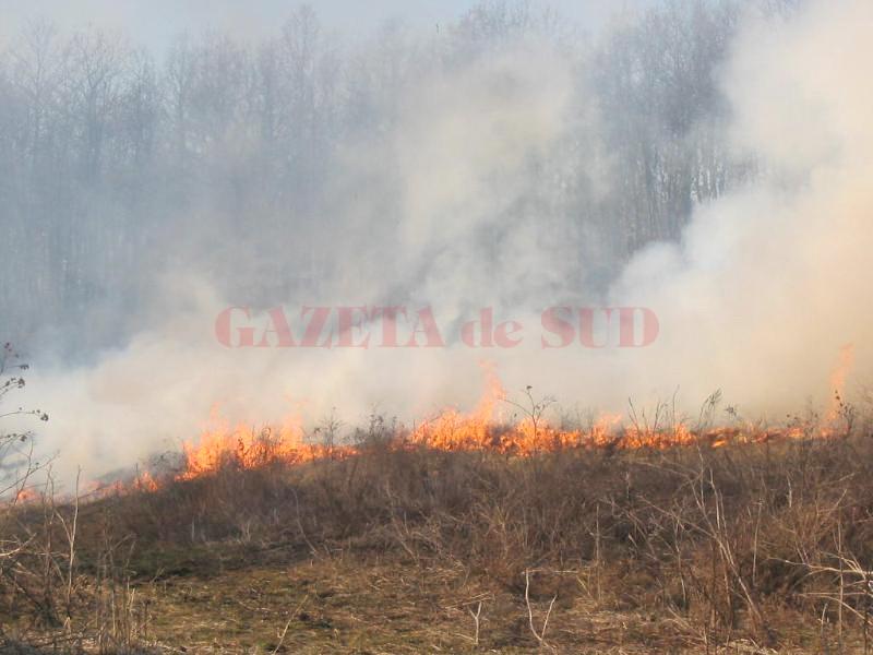 Incendiile îi lasă fără subvenţii pe fermieri