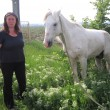 """Calul a fost găsit de către femeia din imagine și de o altă voluntară la o asociație  pentru protecția animalelor. Acesta va merge, temporar, la Hipodromul din Parcul  """"Nicolae Romanescu"""". (Foto: Anca Ungurenuș)"""