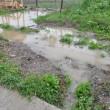 Rezerva de apă din pământ s-a refăcut, dar apa bălteşte în unele zone