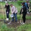 Copiii au participat personal la plantarea merilor (Foto: Eugen Măruţă)