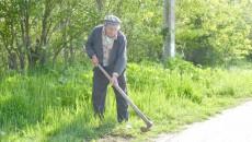 În Dolj există peste 24.000 de zilieri. Cei mai mulți lucrează în agricultură