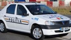 politia-logan-740x360