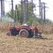 Condiţii mai dure pentru fermierii care vor subvenţii