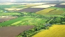 Primarul comunei Godeanu este acuzat că a obținut nelegal fonduri de la APIA  pentru 198 de hectare de teren agricol