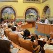 Consiliul Local Craiova
