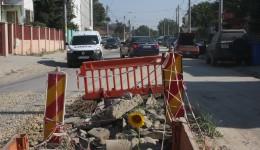 Floarea-soarelui a răsărit dintr-una din gropile de pe strada Bariera Vâlcii, de pe primul tronson, semn că firma constructoare nu a mai trecut de mult pe acolo (FOTO: Anca Ungurenuș)