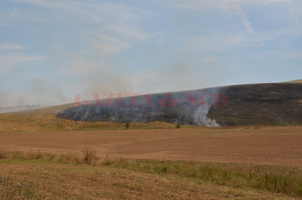 Curățarea terenului prin incendierea miriștilor îi poate lăsa pe fermieri fără subvenția pe suprafață