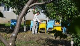 Gigel Ciucă a atras fonduri europene pentru a-și extinde activitatea de apicultor (Foto: Lucian Anghel)
