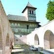 Mănăstirea Strehaia (Foto: Claudiu Tudor)