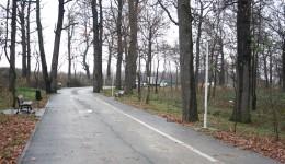 O alee din Parcul Tineretului a fost lăsată fără lămpile de iluminat (Foto: Traian Mitrache)