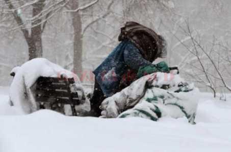 iarna-fara-adapost-453x300