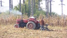 Micii fermieri, avantajaţi la plata impozitelor în acest an (FOTO: Eugen Măruţă)