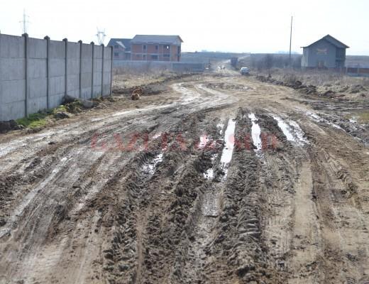 Pe Aleea Teilor noroiul tronează în locul asfaltului (Foto: Claudiu Tudor)