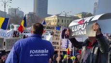 proteste_padurari_18676500