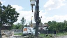 Bărbatul a căzut în gol după ce copacul tăiat s-a prăbușit pe autoutilitara Ford (FOTO: Un cititor GdS)