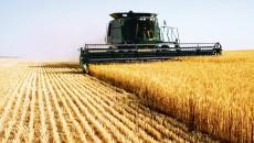 Pentru recuperarea prejudiciului, instanța a dispus menținerea sechestrului pus pe un teren arabil deținut de inculpatul Marius Ionescu în localitatea Perişor