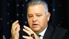 Niculae Havrileț, președintele Autorității Naționale de Reglementare în Energie (ANRE) (FOTO: Agerpres)
