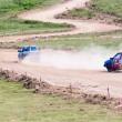 """Sâmbătă şi duminică, pe 7 şi 8 mai, la Preajba, se desfăşoară şi prima ediţie a  """"Cupei Narciselor la Rallycross"""""""