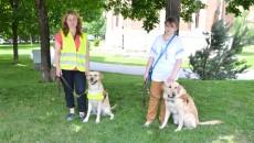 """Cei doi labradori primiţi de aceste femei au fost donaţi de Asociaţia Light Into Europe, prin programul """"Câini-ghizi pentru nevăzători"""" (Foto: Claudiu Tudor)"""