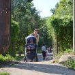 A doua cale de acces în Grădina Botanică, folosită  de mulți craioveni, va fi transformată curând  într-o cale de acces propriu-zisă, potrivit RAADPFL (Foto: Bogdan Grosu)
