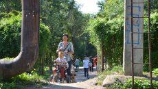 Cea de-a doua intrare în Grădina Botanică îi pune în dificultate pe cei care au copii şi trebui să treacă pe aici şi cu căruţul (Foto: Bogdan Grosu)