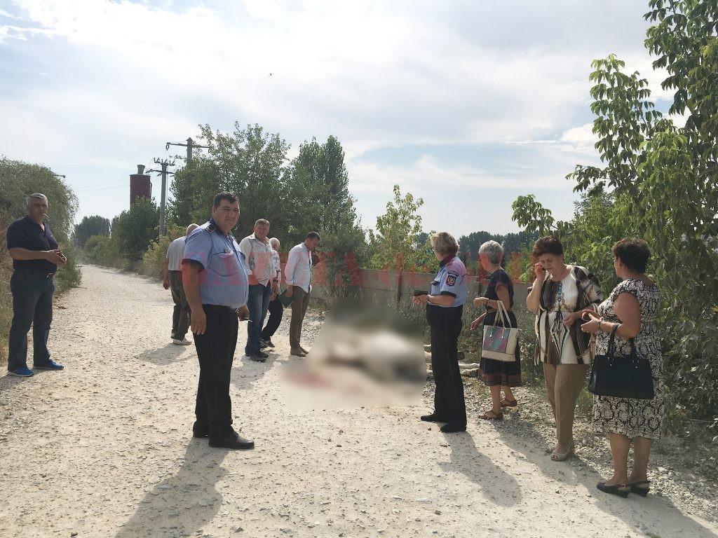 Oamenii legii încearcă să stabilească în ce condiții  și-a pierdut viața animalul care tracta o căruță  pe Aleea 1 Șimnic din Craiova