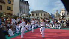 """Karateka de la LPS """"Petrache Trişcu"""", multiple campioane la competiţii importante"""